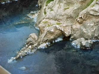 Художественный макет имитации скал и прибрежной зоны